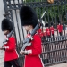 Changing the Guard, leaving