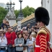 Changing the Guard , adoring public