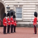 The Scots Guards at Buckingham Palace